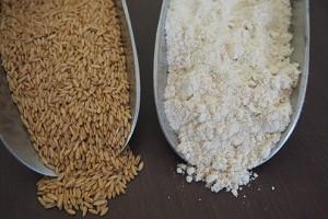 FLM_Oat-Flour