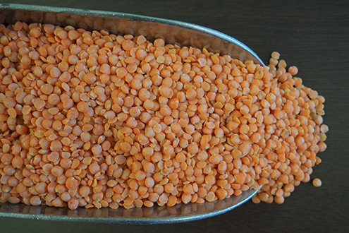 FLM_Red-Split-Lentils